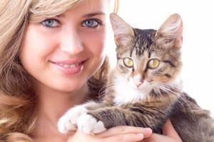 Katzenkrankenversicherung Vergleich