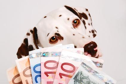 Tierkrankenversicherung Europa